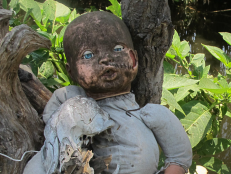 There's just something really thrilling about a place with a dark and mysterious past. Take La Isla de las Muñecas, for example. An island covered with decaying old dolls strung up in trees is pretty creepy on its own — even before you get to the dark origin story.