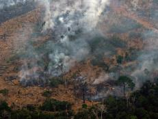 The Amazon rainforest is burning at a record rate. Here is what you need to know.