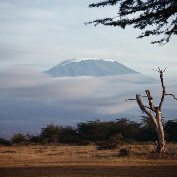 Mount Kilimanjaro, Kilimanjaro National Park