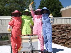 Last year, US beekeepers lost almost 40% of their bee colonies. Four women banded together to help the bee population flourish in Colorado.
